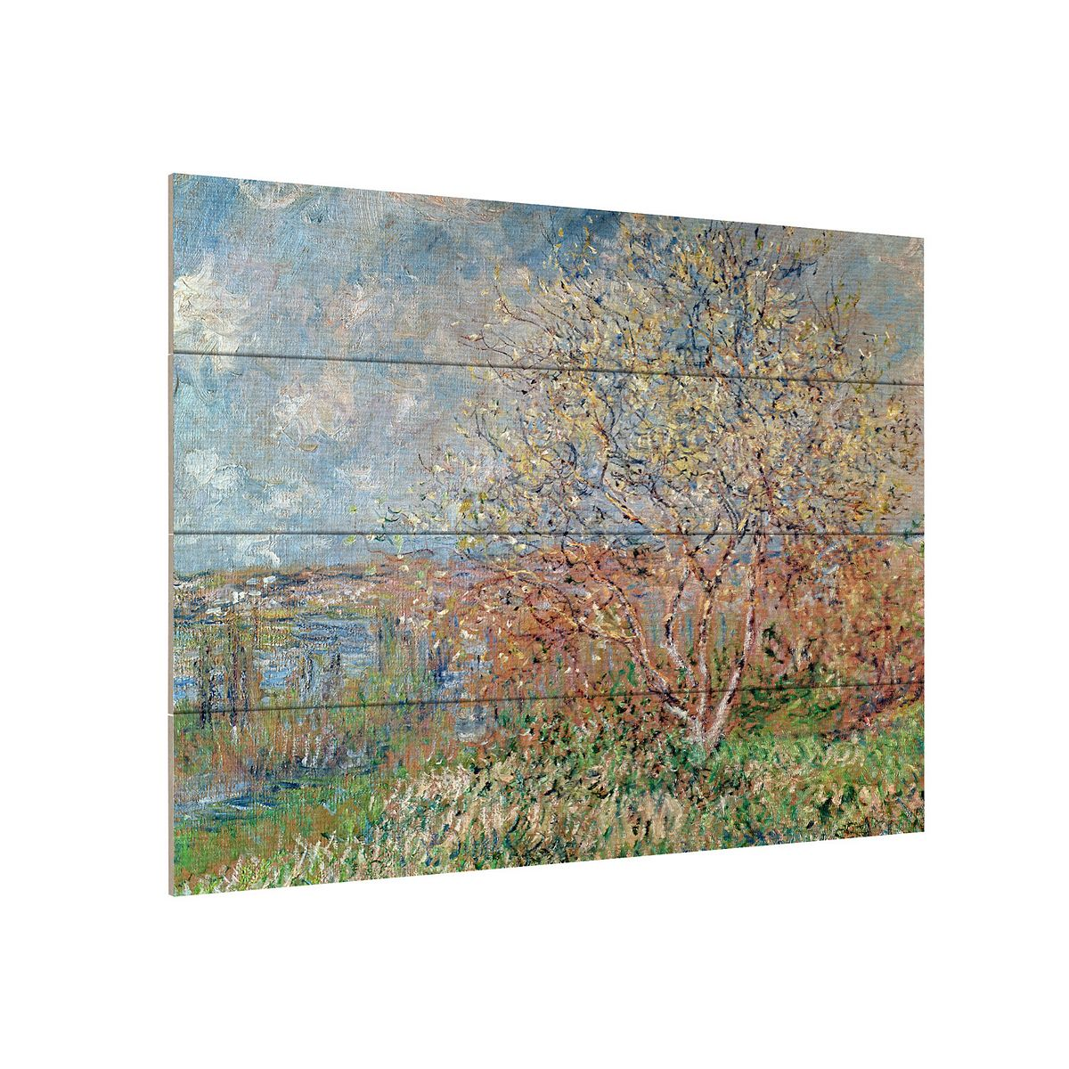 Trademark Fine Art Claude Monet 'Water Lilies 1914-22' Wood Slat Art ZAkzF